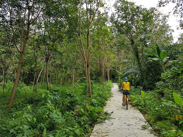 Mit dem Fahrrad unterwegs auf Koh Mook.